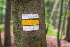 Ζωηρόχρωμο σημάδι ή σημάδι τουριστών στο δέντρο Στοκ Φωτογραφίες
