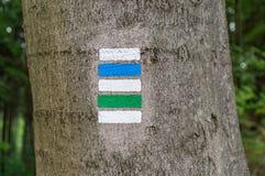 Ζωηρόχρωμο σημάδι ή σημάδι τουριστών στο δέντρο Στοκ εικόνα με δικαίωμα ελεύθερης χρήσης