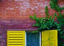 ζωηρόχρωμο σπίτι λεπτομε&r Στοκ Φωτογραφία