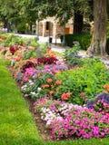 Ζωηρόχρωμο σπορείο λουλουδιών Στοκ Εικόνες