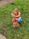Ζωηρόχρωμο στόμιο υδροληψίας πυρκαγιάς στοκ φωτογραφίες με δικαίωμα ελεύθερης χρήσης