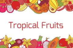 Ζωηρόχρωμο συρμένο χέρι οριζόντιο πλαίσιο με τα τροπικά εξωτικά φρούτα Στοκ Φωτογραφίες
