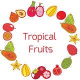 Ζωηρόχρωμο συρμένο χέρι πλήρες πλαίσιο κύκλων με τα τροπικά εξωτικά φρούτα Στοκ Εικόνες