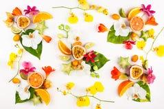 Ζωηρόχρωμο σχέδιο ολόκληρων και των τεμαχισμένων εξωτικών φρούτων με τα τροπικά φύλλα και τα λουλούδια στοκ εικόνα
