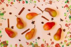Ζωηρόχρωμο σχέδιο φιαγμένο από αχλάδια, ραβδιά κανέλας και anice Στοκ Εικόνες