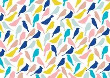 Ζωηρόχρωμο σχέδιο πουλιών Στοκ Φωτογραφίες