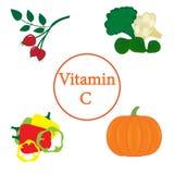 Ζωηρόχρωμο σύνολο προϊόντων που περιέχουν την περισσότερη βιταμίνη C διανυσματική απεικόνιση