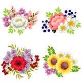 ζωηρόχρωμο σύνολο λουλουδιών στοιχείων σχεδίου Στοκ εικόνες με δικαίωμα ελεύθερης χρήσης
