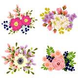 ζωηρόχρωμο σύνολο λουλουδιών στοιχείων σχεδίου Στοκ Εικόνες