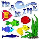 ζωηρόχρωμο σύνολο ψαριών ενυδρείων, ωκεανός φύσης συλλογής και θάλασσα, θαλάσσιο στοιχείο που αλιεύει, διανυσματική απεικόνιση