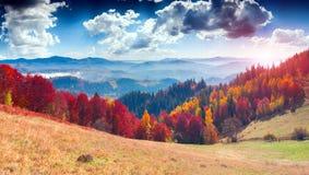 Ζωηρόχρωμο τοπίο φθινοπώρου στο ορεινό χωριό ομιχλώδες πρωί