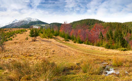 ζωηρόχρωμο τοπίο φθινοπώρ&omic Στοκ Εικόνα