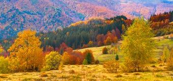 ζωηρόχρωμο τοπίο φθινοπώρ&omic Στοκ φωτογραφία με δικαίωμα ελεύθερης χρήσης
