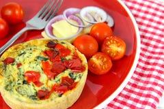 Ζωηρόχρωμο υγιές μεσημεριανό γεύμα Πίτα, τυρί, ντομάτες, κόκκινο κρεμμύδι Στοκ φωτογραφίες με δικαίωμα ελεύθερης χρήσης