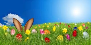 Ζωηρόχρωμο υπόβαθρο λαγουδάκι Πάσχας διανυσματική απεικόνιση