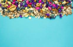 Ζωηρόχρωμο υπόβαθρο θαλασσινών κοχυλιών με το διάστημα αντιγράφων στοκ φωτογραφία με δικαίωμα ελεύθερης χρήσης