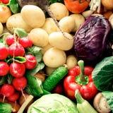 Ζωηρόχρωμο υπόβαθρο λαχανικών Το σύνολο φρέσκων λαχανικών κλείνει επάνω Στοκ Φωτογραφία