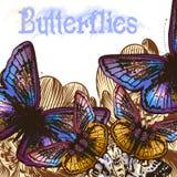 Ζωηρόχρωμο υπόβαθρο πεταλούδων για το σχέδιο Στοκ Φωτογραφίες