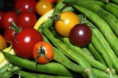 Ζωηρόχρωμο υπόβαθρο τροφίμων φθινοπώρου ντοματών φρέσκο υγιές Στοκ Εικόνες