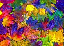 Φύλλα φθινοπώρου διασκέδασης Στοκ φωτογραφία με δικαίωμα ελεύθερης χρήσης