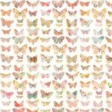 Ζωηρόχρωμο χρωματισμένο σχέδιο υποβάθρου πεταλούδων Στοκ Εικόνες