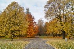 Ζωηρόχρωμο, όμορφο φθινόπωρο - χρυσό πολωνικό φθινόπωρο - αλέα φθινοπώρου Στοκ Φωτογραφία