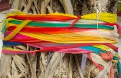Ζωηρόχρωμο ύφασμα τριών χρώματος γύρω από το παλαιό δέντρο άνθρωποι σε Ασιάτη Στοκ εικόνες με δικαίωμα ελεύθερης χρήσης