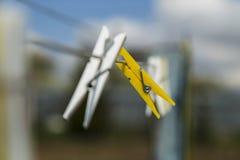 Ζωηρόχρωμο clothespin δύο Στοκ Εικόνα