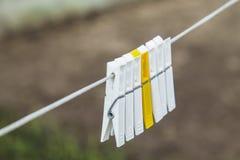 Ζωηρόχρωμο clothespin δύο Στοκ φωτογραφίες με δικαίωμα ελεύθερης χρήσης