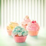 Ζωηρόχρωμο Cupcakes Στοκ εικόνες με δικαίωμα ελεύθερης χρήσης