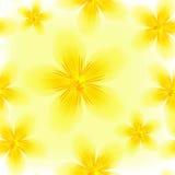 ζωηρόχρωμο floral πρότυπο άνευ ρ& Στοκ εικόνα με δικαίωμα ελεύθερης χρήσης