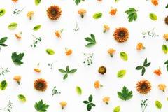 Ζωηρόχρωμο floral πρότυπο Στοκ εικόνα με δικαίωμα ελεύθερης χρήσης