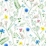 Ζωηρόχρωμο floral σχέδιο με τα άγρια λουλούδια και τα χορτάρια ελεύθερη απεικόνιση δικαιώματος