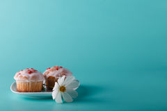 Ζωηρόχρωμο muffin στο πιατάκι με το λουλούδι Υπόβαθρο χρώματος Aqua Στοκ φωτογραφία με δικαίωμα ελεύθερης χρήσης