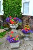 Ζωηρόχρωμο patio σπιτιών δοχείων λουλουδιών Στοκ Εικόνες