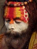 ζωηρόχρωμο shivaratri sadhu φεστιβάλ στοκ εικόνα