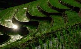 ΖΩΗ ΤΗΣ FARMER Στοκ φωτογραφία με δικαίωμα ελεύθερης χρήσης