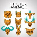 Ζωικά εικονίδια Hipster καθορισμένα Στοκ Εικόνα