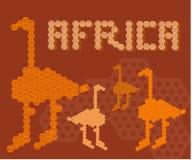 Ζωική έννοια ανθρώπων εδάφους περιπέτειας ηπείρων της Αφρικής Στοκ εικόνα με δικαίωμα ελεύθερης χρήσης