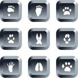 ζωική διαδρομή κουμπιών διανυσματική απεικόνιση