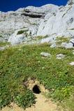 Ζωική τρύπα στη βουνοπλαγιά Στοκ φωτογραφία με δικαίωμα ελεύθερης χρήσης