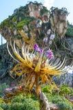 Ζωικό βασίλειο Pandora του παγκόσμιου Ορλάντο Φλώριδα της Disney στοκ φωτογραφία με δικαίωμα ελεύθερης χρήσης
