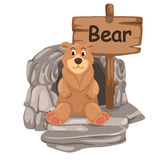 Ζωικό γράμμα Β αλφάβητου για την αρκούδα Στοκ Φωτογραφία