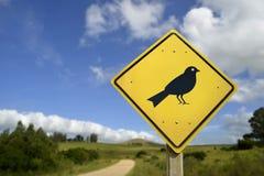 Ζωικό εικονίδιο έννοιας άγριας φύσης πουλιών στο οδικό σημάδι στοκ εικόνες