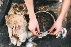 Ζωικό κρανίο και dreancatcher στο υπόβαθρο πετρών Στοκ εικόνες με δικαίωμα ελεύθερης χρήσης