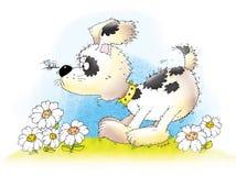 Ζωικό σκυλί Στοκ Φωτογραφίες