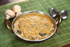 Ζωμός μανιταριών, kukurmutta Salan, kalan kulambu στοκ φωτογραφίες