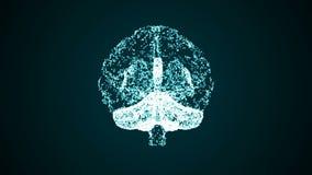Ζωντανεψοντας εγκέφαλος που διαμορφώνεται από τα σημεία ελεύθερη απεικόνιση δικαιώματος