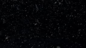 Ζωντανεψοντας χιονοθύελλα βρόχος χιονιού των μορίων χιονιού φιλμ μικρού μήκους