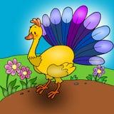 ζωντανεψοντας peacock ελεύθερη απεικόνιση δικαιώματος